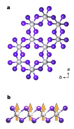 图2,图片来自 Huang, Bevin, et al.